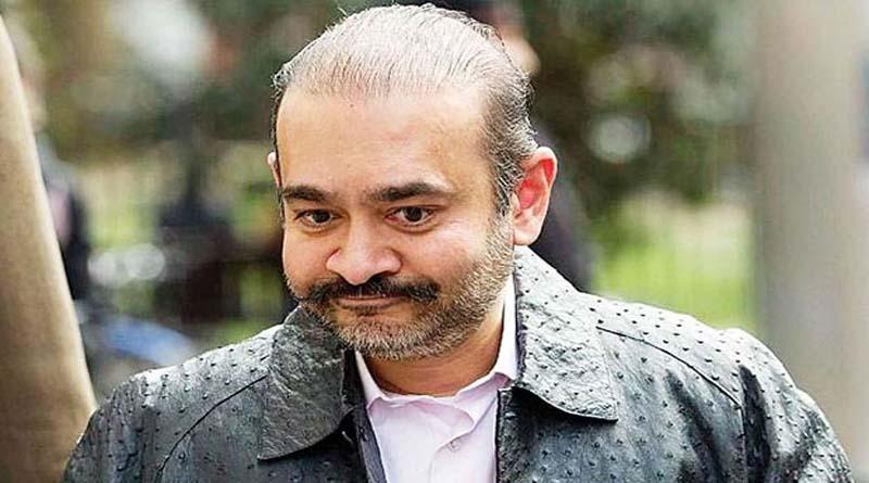 नीरव मोदी के भारत आने का रास्ता साफ, अदालत ने आवेदन खारिज किया